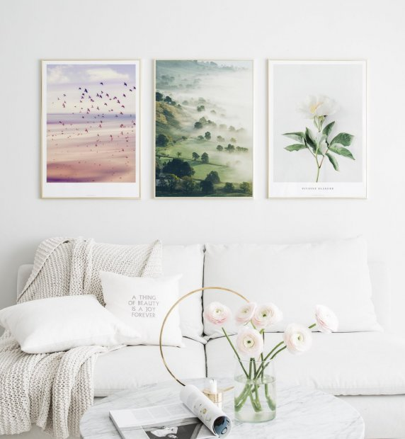 Gallery wall with gold frames and nature posters